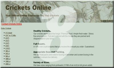 Crickets Online
