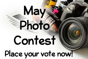 May Photo Contest: Voting Now Open