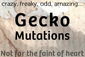 12 Gecko Mutations