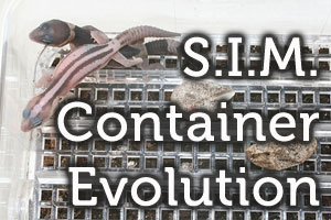 Squamata Concepts' S.I.M. Container Evolution