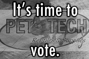 Pet-Tech Photo Contest: Time to Vote