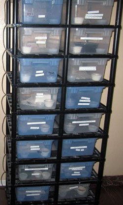 Pricing Includes Rack Shipping Tubs And Heat Comparable Units Are In Comparisons