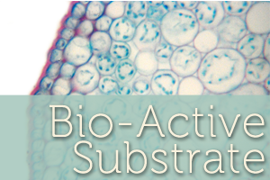 Bio-active Substrate