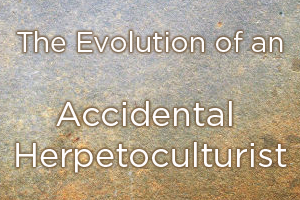 The Evolution of an Accidental Herpetoculturist