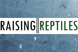 "Introducing ""Raising Reptiles"""