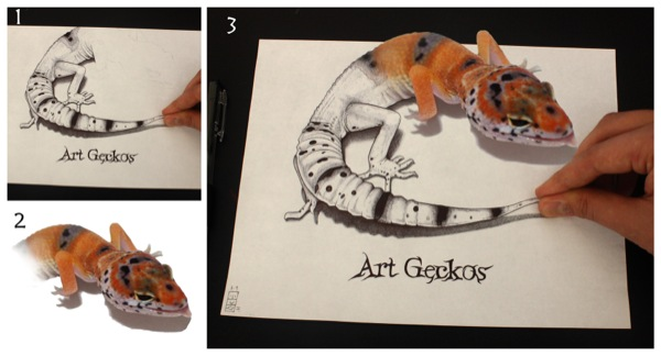 (H)artgeckosS