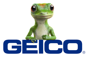 Gecko Time acquired by Geico