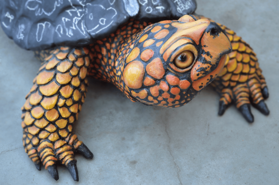 box turtle sculpture
