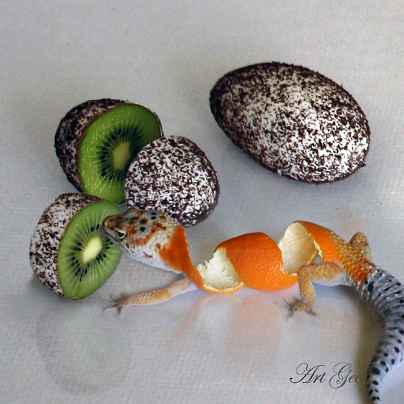 True Tangerine leopard gecko with eggs